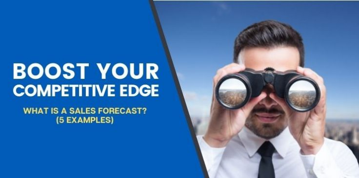 What is a Sales Forecast? (5 Examples)