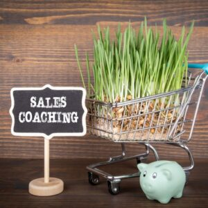 What Do Personal Sales Coaches Do